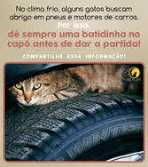 inverno-gato-motor3.png