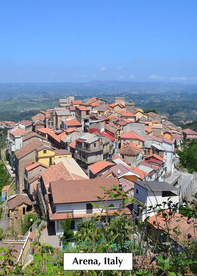 bird's eye view of Italian village