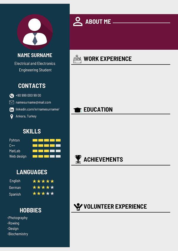CV Örneği (3)-1.jpg