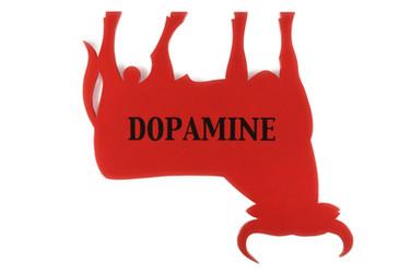 Dopamine, 2010