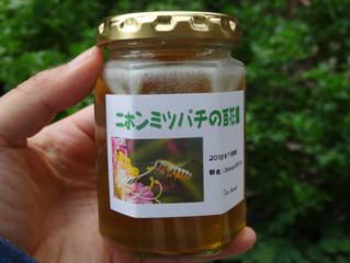 発酵する蜂蜜