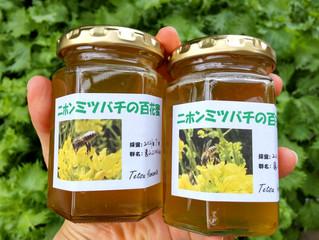 日本ミツバチのはちみつ♡