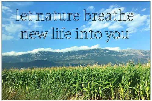 Nature's Breath by Diana De Benedictis