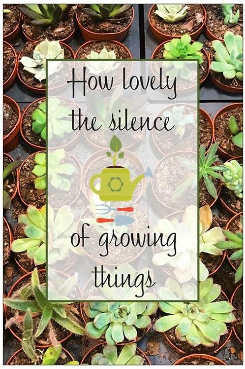How lovely the silence...