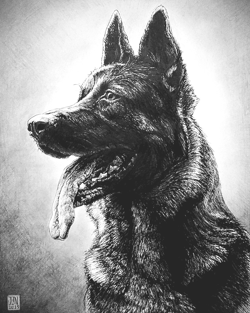 GERMAN SHEPARD INK
