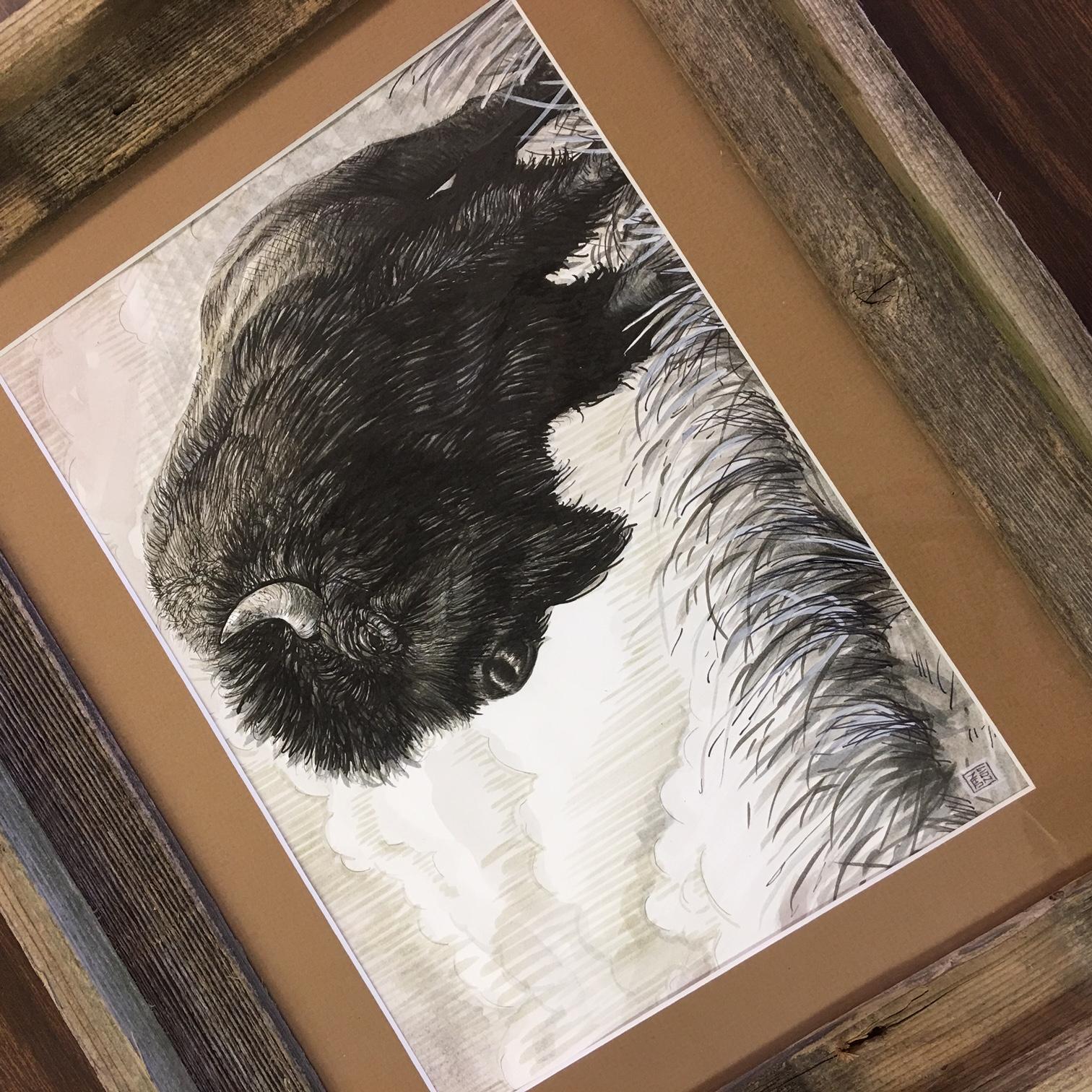 bison f