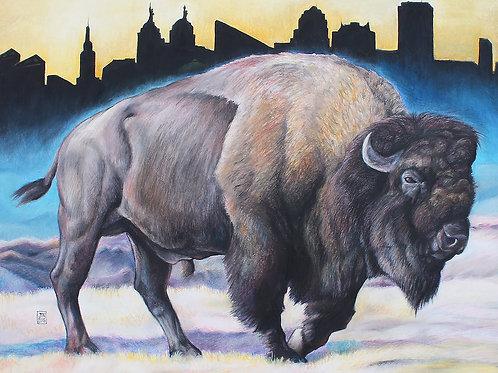 Buffalo Bison print