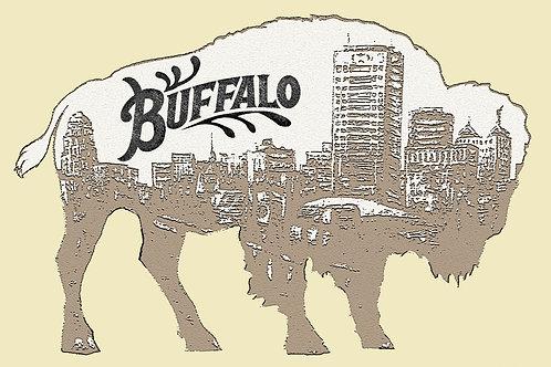 Buffalo NY  Postcard