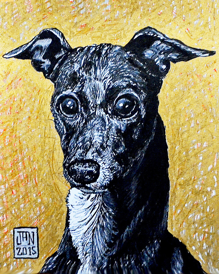 ITALIAN GREYHOUND SKETCH.jpg