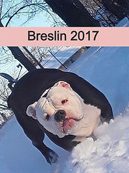 Breslin%202017l_edited.jpg