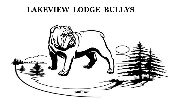 lakeview Lodge Bullys.PNG