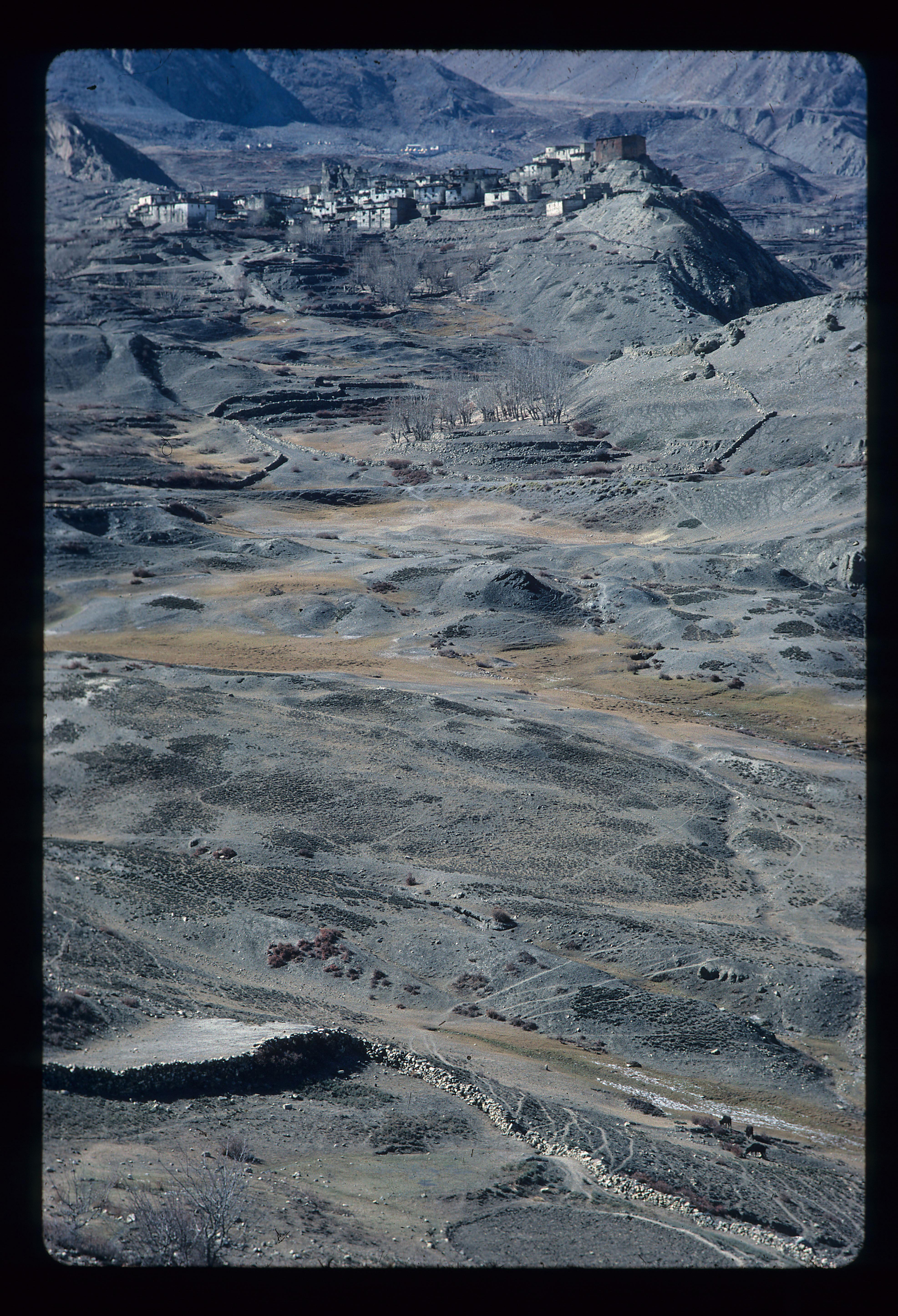 NEPAL 1977 111