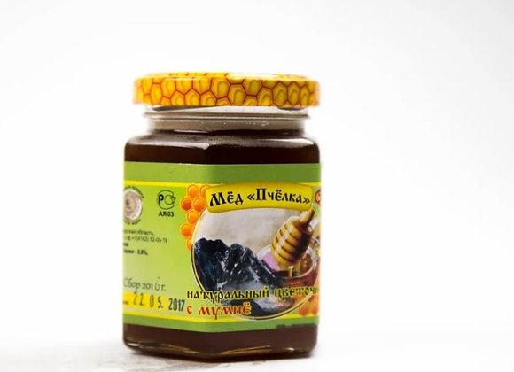 Мёд с мумиё