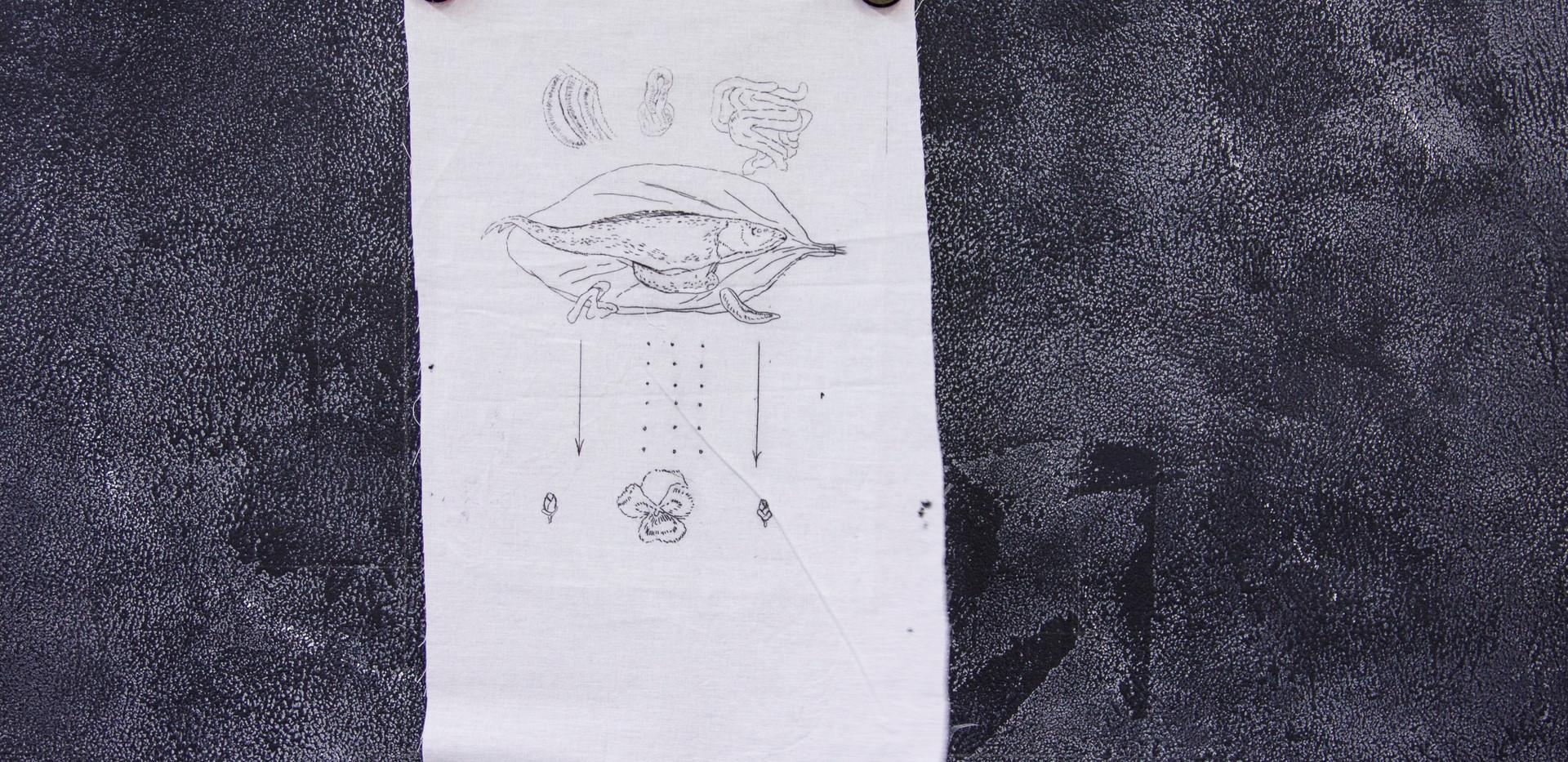 s2 (146).jpg