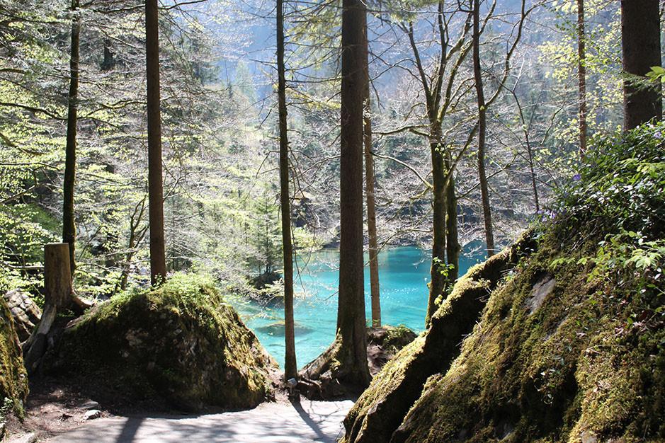 Blausee, lac bleu