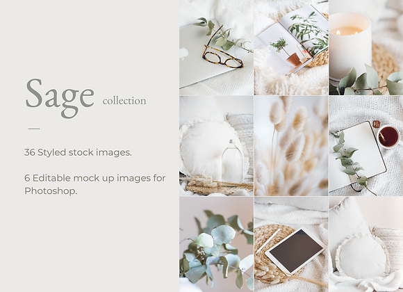 SAGE COLLECTION PHOTO AND MOCK UP BUNDLE