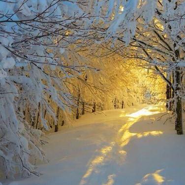 Magic Snow - Source Pinterest