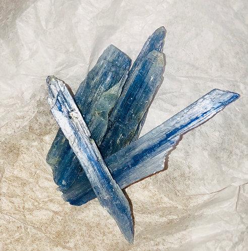 Blue Kynatie