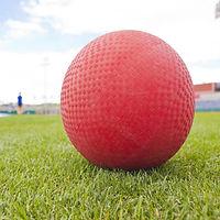 _website button kickball day.jpg
