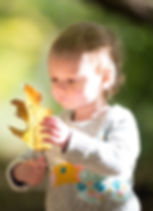 Fall photoshoots for all families, friends and models. Foilage photoshoots in Connecticut offered all October and November. Leave Photoshoots. Children in Fall.