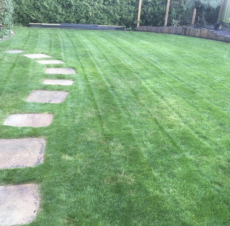Lawn cutting to perfection