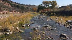 LTWC – Watershed Resilience Implementation Project