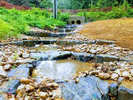 Cooley Road Stream Restoration