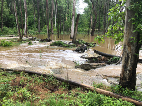 Floodplains- Make the Connection