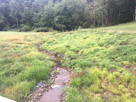 Eisenhower Golf Course Stream & Wetland Restoration - Luke Feight, project superintendent