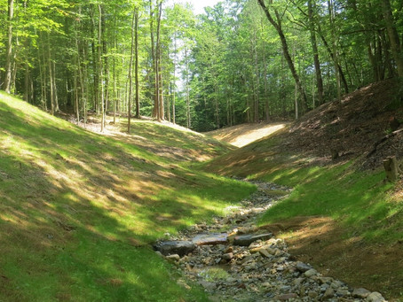 Lower James Stream Mitigation Bank in Surry, VA