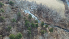 Gramies Run supports Chesapeake Bay Restoration Efforts