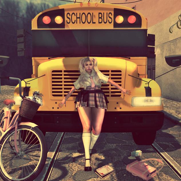 No School Day