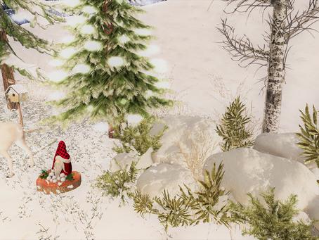 Winter Arrangement (with plants) ♔#39♔