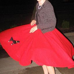 A Novel and a Skirt