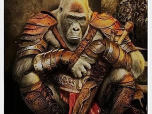 Don't Monkey  Around