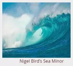 Nigel Bird's Sea Minor