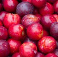 plums.jpg
