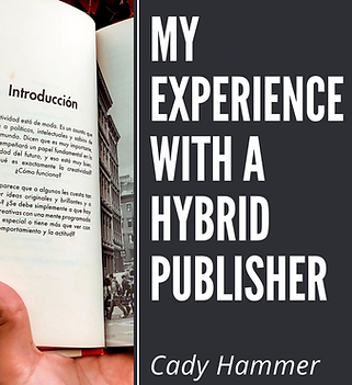 My-Experience-with-a-Hybrid-Publisher-20