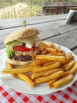 Burger maison Les Etangs du Bord de Loir