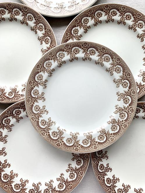 Antique Transferware Bordered Luncheon Plates Set