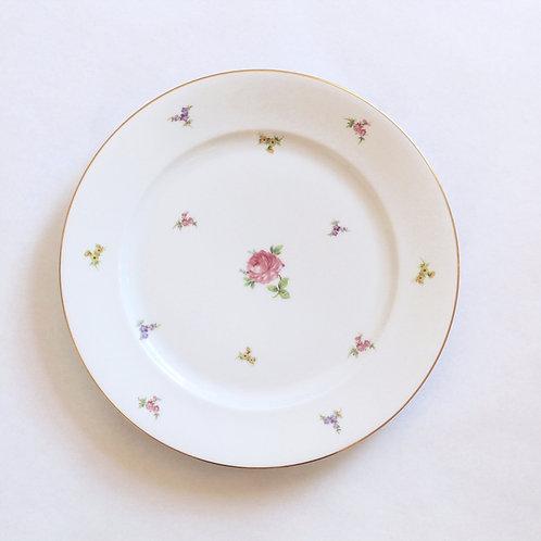 Rosenthal Posies Porcelain Dinner Plates