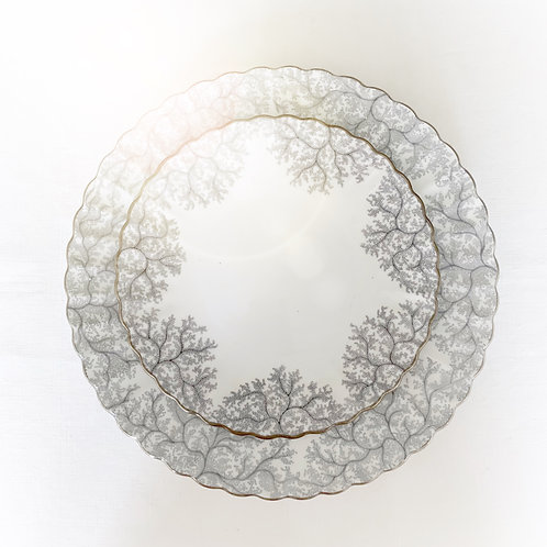 Gray Coral Set of Dinner and Salad plates for 4