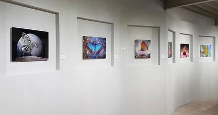 Ausstellungsnischen