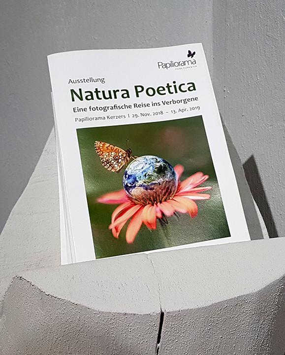 Katalog zur Ausstellung