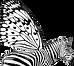 Zebra-Logo.png