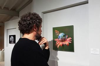 «World Flower»