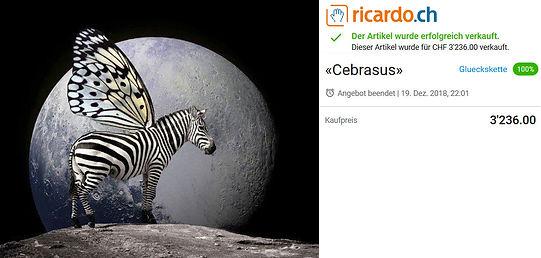 Versteigerung Cebrasus.jpg