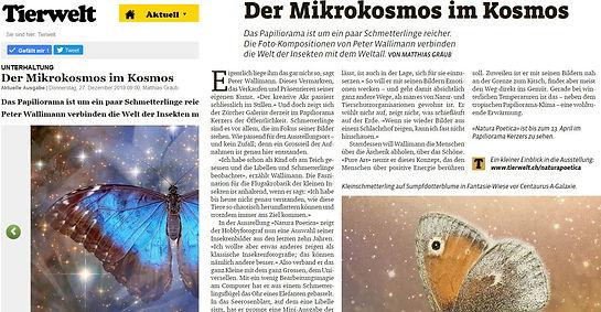 Tierwelt Beitragsbild.JPG