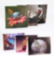 Karten fused_low.jpg