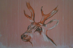 Stag (2009)